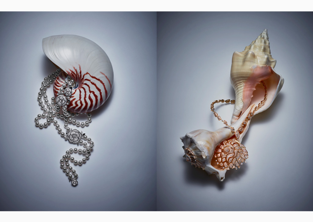 Editorial - Glass - Chanel